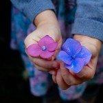 シンプル可愛い女性向けSimplicityスキン「Flower Pop」